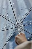 폭우 (비), 기상 (날씨), 날씨, 일기예보 (인공), 비 (물형태), 빗방울, 장마, 장마 (계절), 폭우, 우산 (액세서리)