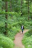 남성, 청년 (성인), 혼자여행 (여행), 숲, 산림욕, 걷기 (물리적활동), 골든리트리버, 반려동물 (길든동물), 산책길 (보행로), 미소
