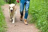 남성, 청년 (성인), 혼자여행 (여행), 숲, 산림욕, 걷기 (물리적활동), 골든리트리버, 반려동물 (길든동물), 산책길 (보행로), 애완동물목걸이 (애완동물장비)
