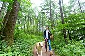 남성, 청년 (성인), 혼자여행 (여행), 숲, 산림욕, 걷기 (물리적활동), 골든리트리버, 반려동물 (길든동물), 산책길 (보행로)