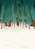풍경 (컨셉), 계절, 자연풍경, 숲, 밤 (시간대), 발자국