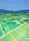 풍경 (컨셉), 계절, 자연풍경, 쟁기질된밭 (들판), 논, 시골풍경 (교외전경)