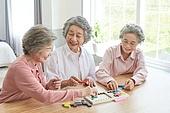 노인 (성인), 노인여자 (성인여자), 공부, 교육 (주제), 퍼즐 (레저게임), 치매, 미소