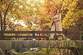가을, 단풍나무 (낙엽수), 가을 (계절), 11월, 서울 (대한민국), 단풍길, 단풍철 (가을), 단풍잎 (잎), 걷기 (물리적활동)