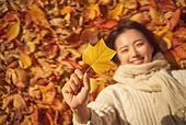 가을 (계절), 감성, 11월, 한국인, 단풍철 (가을), 소풍 (아웃도어), 단풍잎 (잎), 낙엽