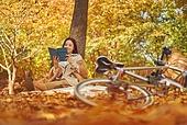 가을 (계절), 감성, 11월, 단풍철 (가을), 소풍 (아웃도어), 행복, 단풍잎 (잎), 낙엽, 휴가 (주제), 독서