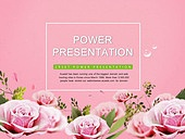 PPT,파워포인트,메인페이지,꽃,장미,사각형,프레임,봄,이벤트