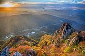 일출,아침,노을,단풍,가을,나무,숲,장군봉,정상,봉우리,대둔산,바위,바위산,도립공원,산,나무,숲,풍경,전경,실외,완주군,전북,한국,국내여행,