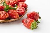 딸기,과일,채소,열매,빨강,신선,농작물,농업,날것,소쿠리,한국,국내여행,실내,정물,클로즈업,배경,