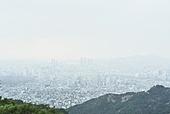 대기오염 (공해), 스모그, 환경오염