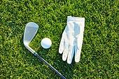 골프, 운동, 골퍼, 골프장, 골프채, 골프글러브 (스포츠글러브), 골프공
