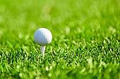 골프, 여가 (주제), 골프장, 골프공