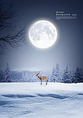 풍경 (컨셉), 겨울, 계절, 자연풍경, 포스터, 설경 (풍경), 사슴 (발굽포유류)