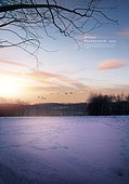 풍경 (컨셉), 겨울, 계절, 자연풍경, 포스터, 설경 (풍경), 새벽