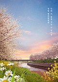 풍경 (컨셉), 자연풍경, 시작, 새로움, 벚꽃, 꽃, 감성