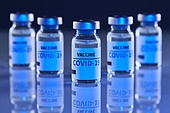 코로나바이러스 (바이러스), 코로나19 (코로나바이러스), 집단면역 (주제), COVID-19 (Coronavirus), 집단면역, 질병예방, 예방접종 (주사), Vaccination (Medical Injection), 생물학 (과학), 약 (의료품), 치료 (사건)