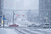 겨울, 겨울 (계절), 한파, 쌓인눈 (눈), 눈 (얼어있는물), 날씨, 도로, 자동차