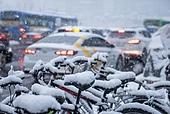 겨울, 겨울 (계절), 한파, 쌓인눈 (눈), 눈 (얼어있는물), 날씨, 도로, 자동차, 교통체증 (교통량), 자전거