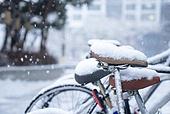 겨울, 눈 (얼어있는물), 날씨, 설경, 쌓인눈, 한파 (자연현상), 자전거