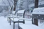 겨울, 눈 (얼어있는물), 날씨, 설경, 쌓인눈, 한파 (자연현상), 의자 (좌석)