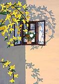 봄, 창문, 프레임, 빛 (자연현상), 꽃, 풍경 (컨셉), 꽃나무, 나무, 화분
