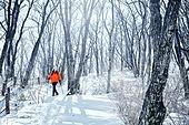 겨울 (계절), 눈 (얼어있는물), 산, 여성, 혼자여행 (여행)