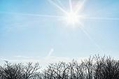 겨울 (계절), 눈 (얼어있는물), 산, 햇빛 (빛효과)