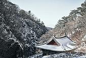 큰절 (한국전통), 사찰 (사원), 종교, 불교, 한국문화