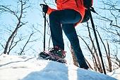 겨울, 산 (지세), 하이킹 (아웃도어), 산악등반 (클라이밍), 등산로 (길), 하이킹, 산악등반, 체력, 걷기, 취미, 등산로, 아이젠, 등산지팡이, 운동