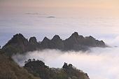 구름,구봉산,바위,바위산,봉우리,나무,산,실외,운해,자연,전북,진안군,풍경,풍경[경치],하늘,한국,국내여행