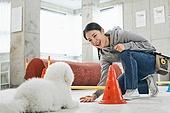 여성, 강아지, 반려동물 (길든동물), 훈련, 도그워커 (직업)