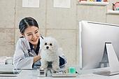 여성, 강아지, 반려동물 (길든동물), 동물병원, 수의사, 진찰 (치료)