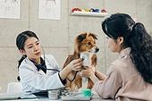여성, 강아지, 반려동물 (길든동물), 동물병원, 수의사, 진찰 (치료), 청진기