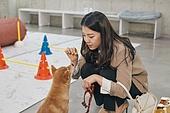 강아지, 강아지유치원, 여성, 리드줄 (애완동물장비)