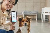 스마트폰, 자동화 (물체묘사), 펫푸드 (애완동물장비), 인공지능, 홈오토메이션 (기술), 미소