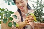 반려식물, 화분, 취미, 미소, 여성, 영양제 (건강관리)
