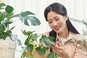 반려식물, 화분, 취미, 미소, 여성, 닦기 (클리닝)