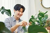 반려식물, 화분, 취미, 남성, 흩뿌리기 (움직이는활동)