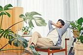 반려식물, 화분, 취미, 미소, 공기정화식물 (식물)