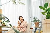 반려식물, 화분, 취미, 여성, 커피브레이크 (휴식), 공기정화식물 (식물)