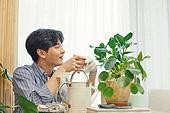 반려식물, 화분, 취미, 커피브레이크 (휴식), 공기정화식물 (식물)
