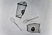 플라스틱, 쓰레기 (물체묘사), 실루엣, 지저분함 (나쁜상태), 구겨짐 (재질), 환경오염, 일회용 (상태), 숟가락