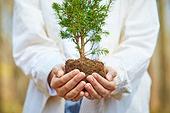 한국인, 어린이 (나이), 식목일, 식목 (환경보호), 환경 (주제), 환경보호, 탄소중립, 묘목, 사람손 (주요신체부분)