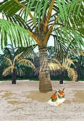 풍경 (컨셉), 여름, 계절, 바다, 휴양지, 야자나무 (열대나무), 해변