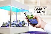 스마트팜, 농업, Artificial Intelligence (Technology), 인공지능, 발광다이오드, 스마트기기 (정보장비), 유기농, 스마트폰, 감시 (컨셉)