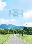 여름, 풍경 (컨셉), 카피스페이스 (콤퍼지션), 감성, 여행, 휴식, 나무
