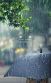 날씨, 여름, 비 (물형태), 장마 (계절), 빗방울, 우산 (액세서리), 장마
