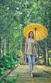 날씨, 여름, 비 (물형태), 장마 (계절), 가로수, 나무, 우산 (액세서리)