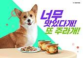반려동물 (길든동물), 펫푸드, 펫푸드 (애완동물장비), 애완견 (개), 통조림 (음식)