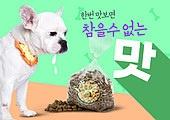 반려동물 (길든동물), 펫푸드, 펫푸드 (애완동물장비), 불독